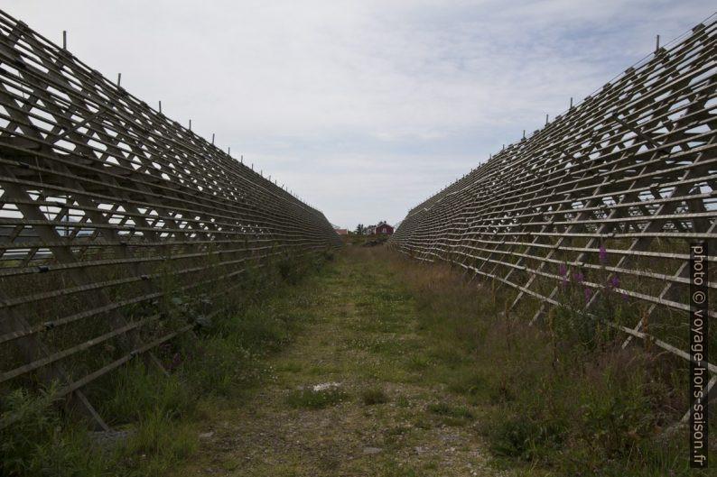 Entre deux racks de séchage sur l'île de Langbakken. Photo © André M. Winter