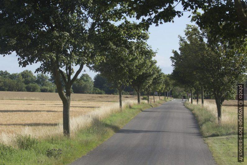Route de campagne au Danemark. Photo © André M. Winter