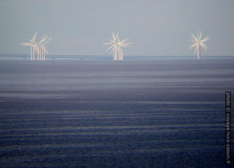 Parc éolien de Lillgrund aux éoliennes alignées. Photo © Nicolas Medwedeff