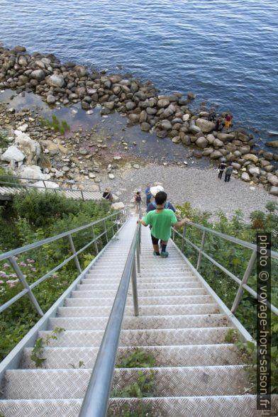 Nicolas descend l'escalier des falaises de Stevns Klint. Photo © Alex Medwedeff