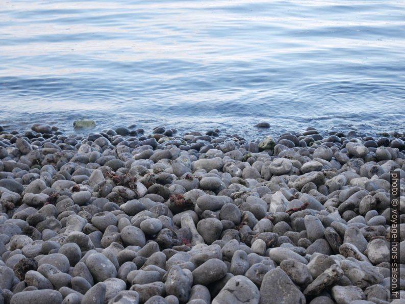 Galets à la plage de Stevns Klint. Photo © Nicolas Medwedeff