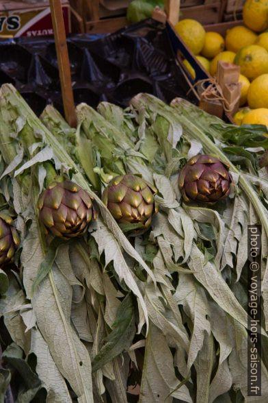 Artichauts de Sicile sur le marché de Ballaro à Palermo. Photo © Alex Medwedeff