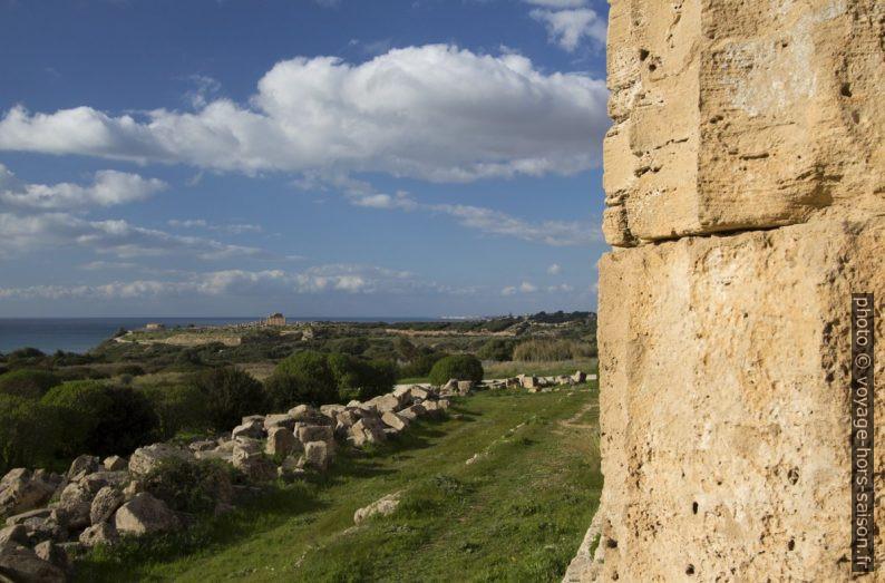 Vue du Temple E vers la colline occidentale de Selinunte. Photo © André M. Winter