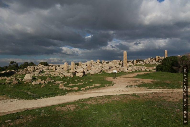 Temples F et G de Selinunte non relevés. Photo © Alex Medwedeff