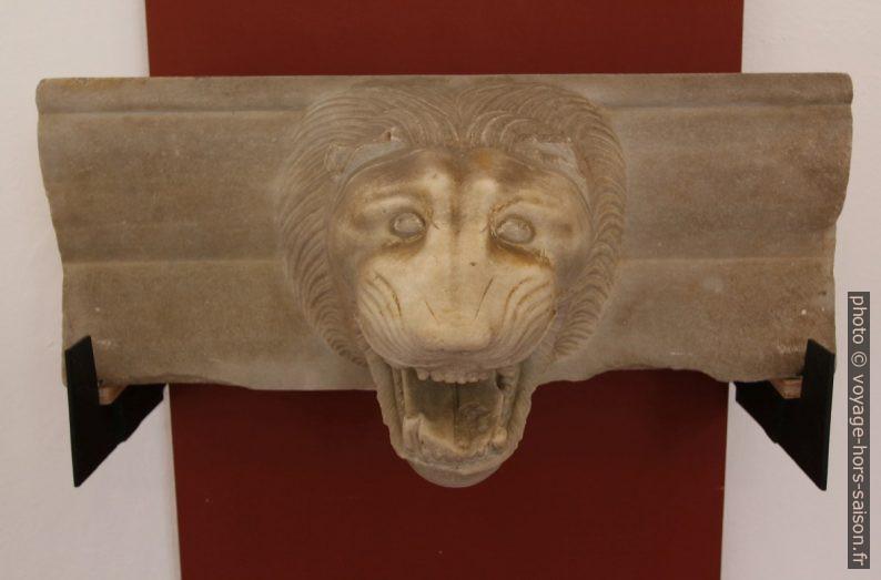Gouttière formée d'une tête de lion en marbre. Photo © André M. Winter