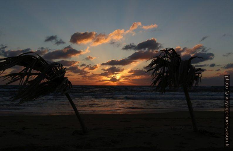 Coucher de soleil entre deux feuilles de palmier. Photo © André M. Winter