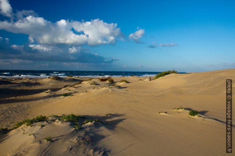 Dunes du Lido Carratois le matin en hiver. Photo © Alex Medwedeff