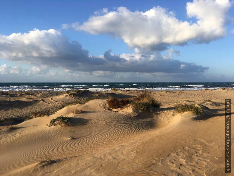 Lido Carratois et ses dunes. Photo © Alex Medwedeff