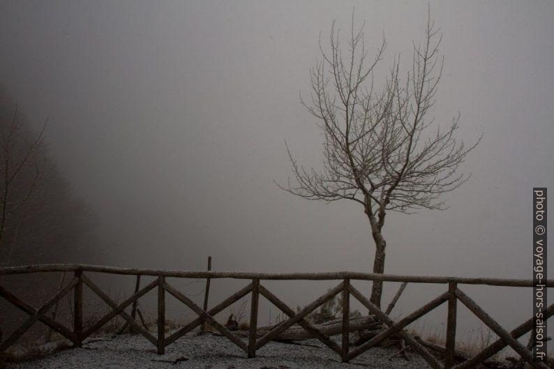 Point de vue dans le brouillard. Photo © Alex Medwedeff