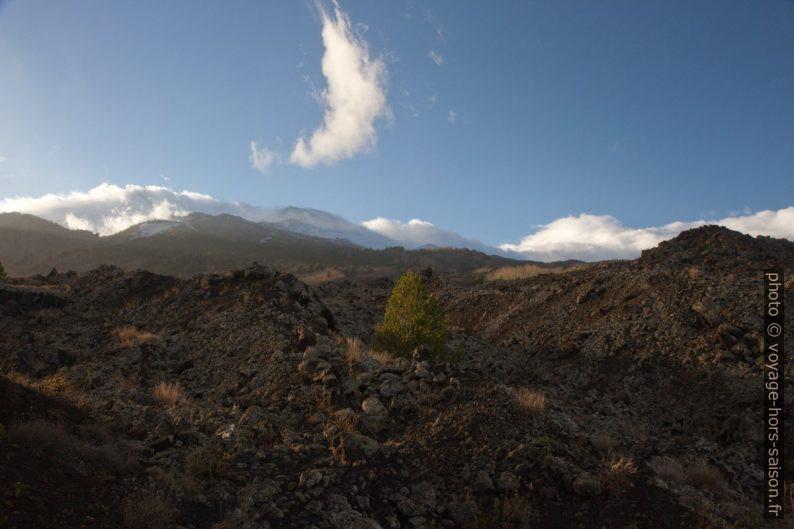 Lave de 1865 et le sommet de l'Etna. Photo © Alex Medwedeff