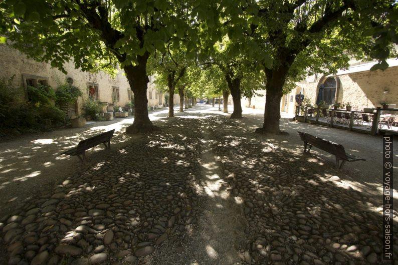Allée de la Grande Cour de l'Abbaye de St. Antoine. Photo © André M. Winter
