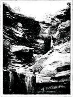 Les sources chaudes et sulfureuse de l'Oued Hadedj