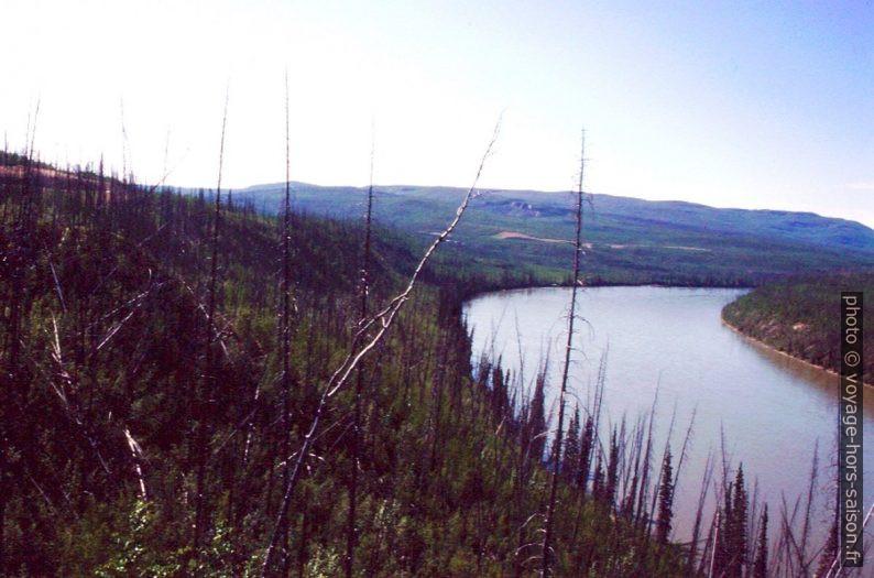 Forêts brûlés au bord du Liard River. Photo © André M. Winter