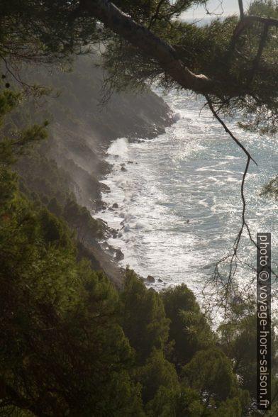 Côte rocheuse abrupte au sud de Tellaro. Photo © Alex Medwedeff