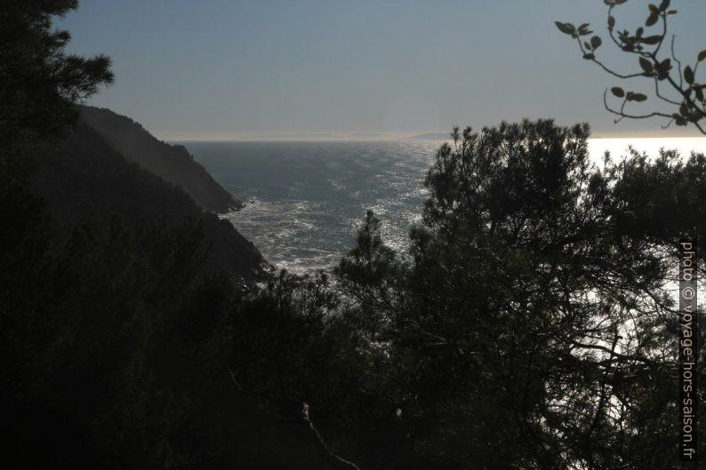 Vu de la côte de Lerici vers le sud. Photo © Alex Medwedeff