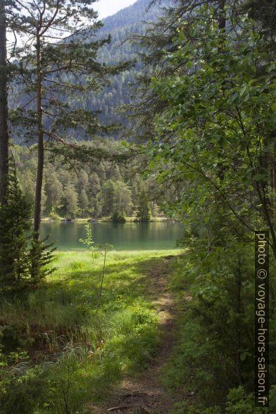 Paysage sauvage du lac Fernsteinsee. Photo © Alex Medwedeff
