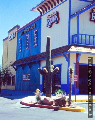 Cactus saguaro à Pahrump. Photo © André M. Winter