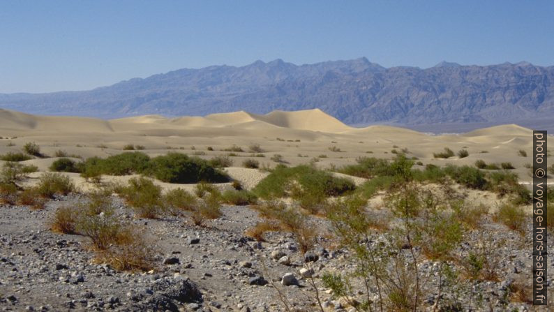 Dunes de sable du Death Valley. Photo © André M. Winter