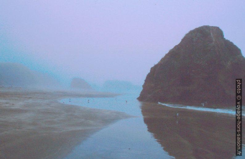 Brume sur une plage à marée basse. Photo © André M. Winter