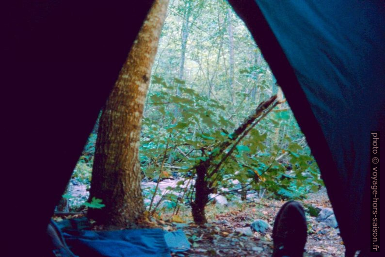 Vue de la tente. Photo © André M. Winter
