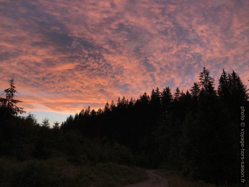 Nuages roses lors du coucher du soleil. Photo © Alex Medwedeff