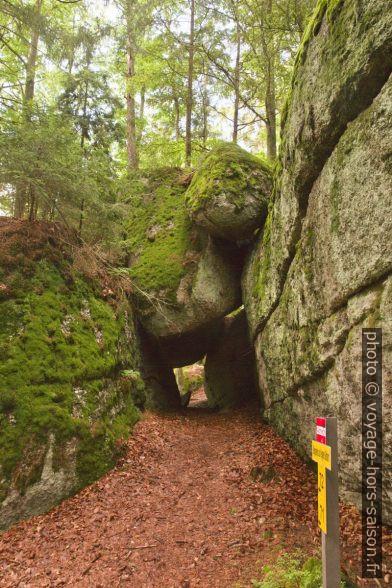 Une des grottes de Fahrthofer Höhlen à Altmelon. Photo © Alex Medwedeff