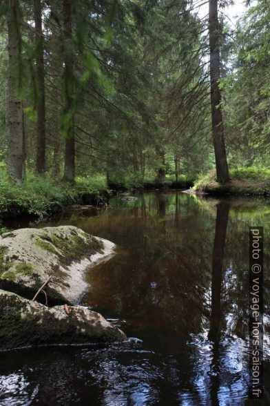 La rivière Grosser Kamp en amont de la cascade Höllfall. Photo © Alex Medwedeff