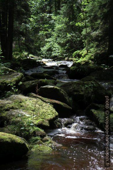 La rivière Grosser Kamp dans la partie Höllfall. Photo © Alex Medwedeff