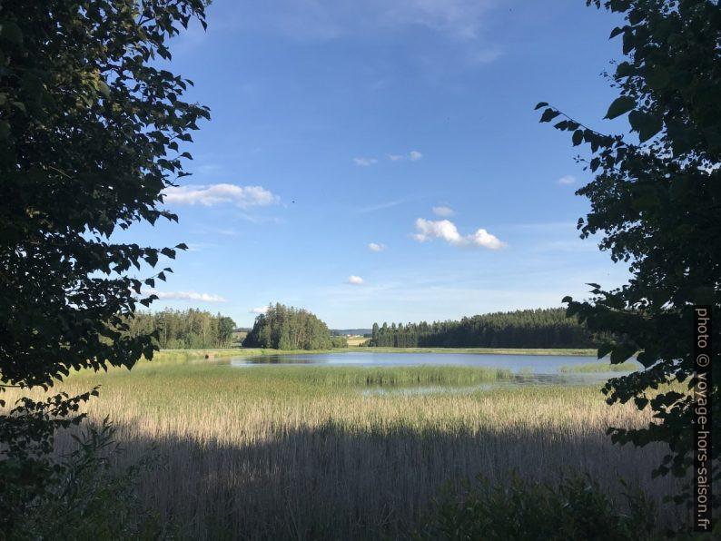 Schnönauer Teich. Photo © Alex Medwedeff