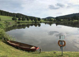 Le lac Frauenwieserteich. Photo © Alex Medwedeff