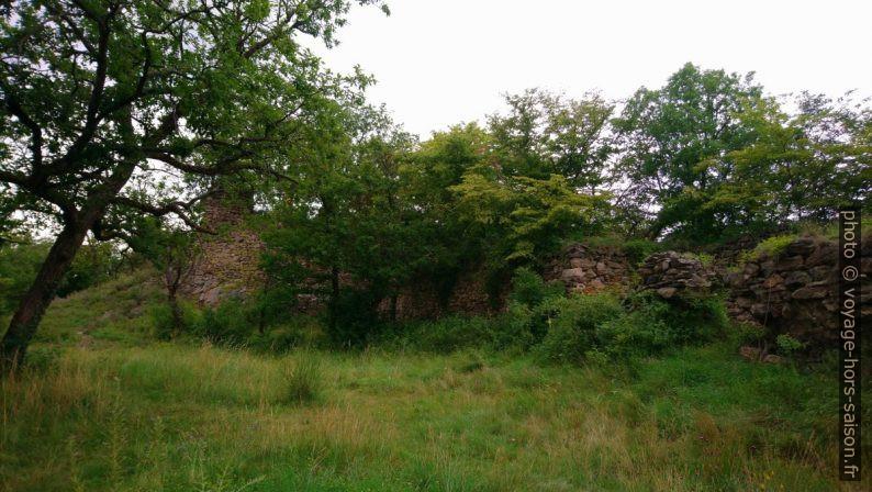 Cour du château de la ruine Schimmelsprung. Photo © André M. Winter
