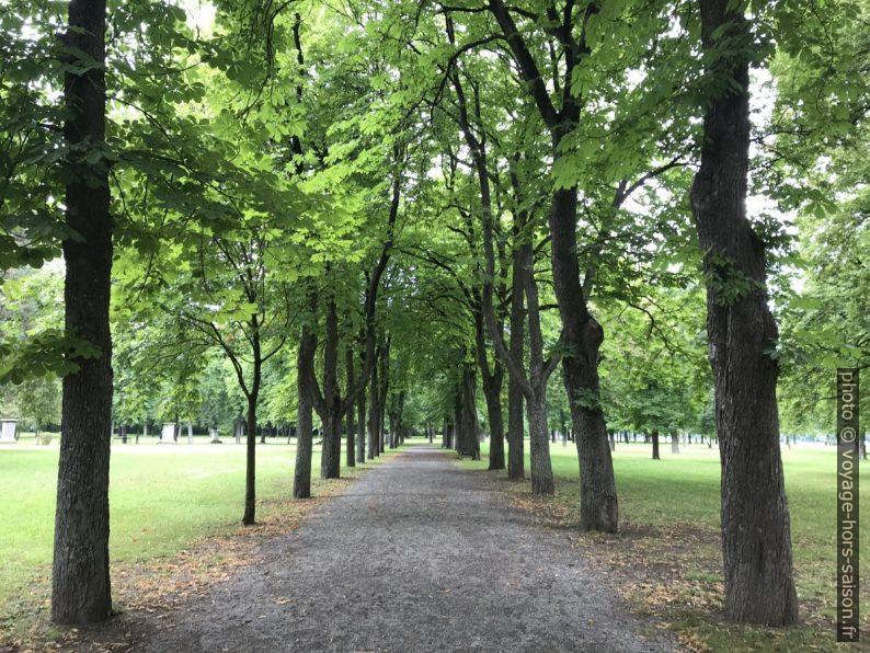 Allée dans le parc de Bad Deutsch-Altenburg. Photo © Alex Medwedeff