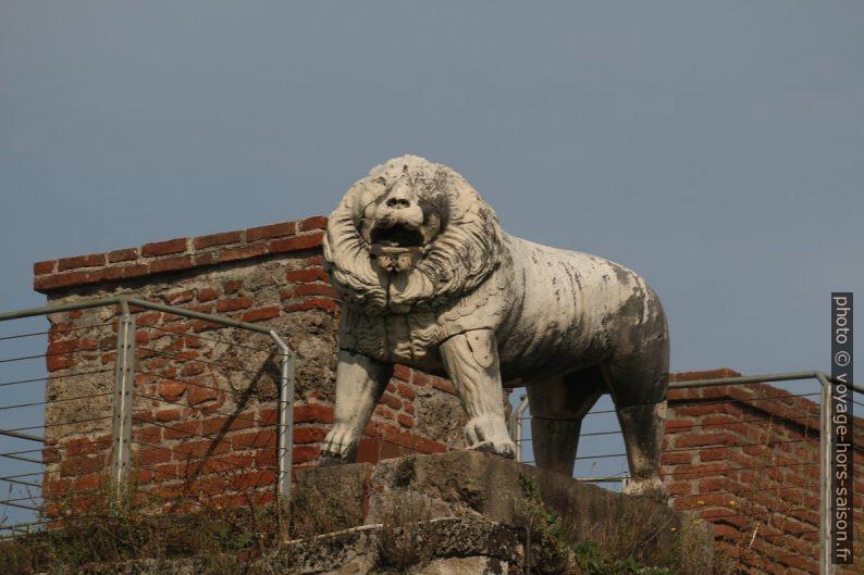 Le lion de la Porta del Leone. Photo © André M. Winter