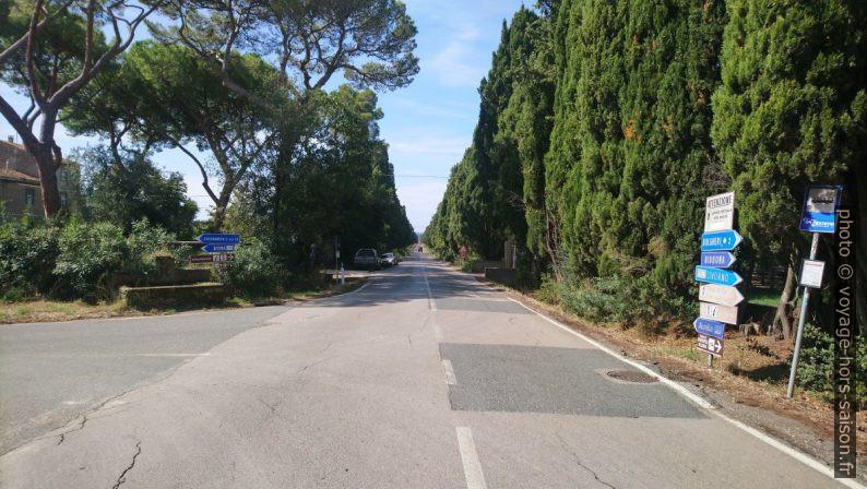 Bifurcation sur le Viale dei Cipressi a Bolgheri. Photo © André M. Winter