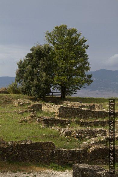 Ruines de l'acropole étrusque de Volterra. Photo © Alex Medwedeff