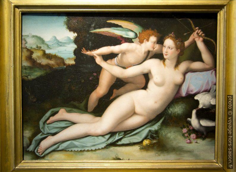 Venere e Cupido, Alessandro Allori, vers 1507. Photo © André M. Winter