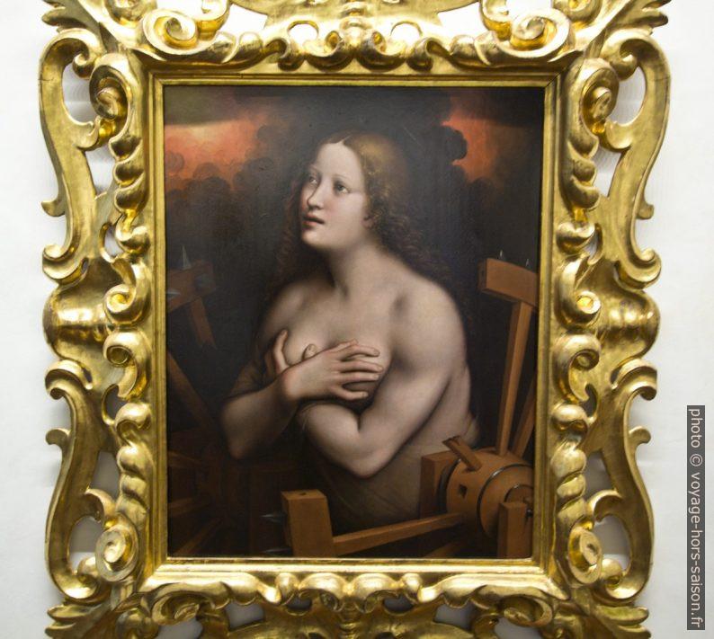 Santa Caterina d'Alessandria, Giampietrino, vers 1530. Photo © André M. Winter