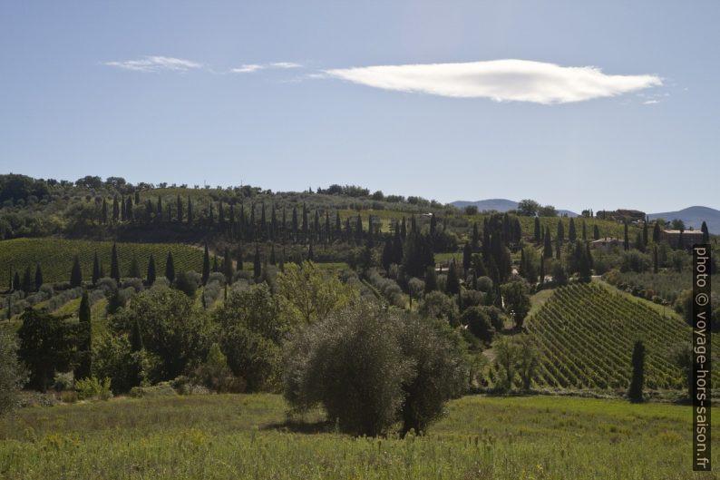 Paysage toscan près de l'Abbaye de Sant'Antimo. Photo © Alex Medwedeff