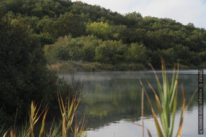 Vapeurs d'eau sur la surface du Lago dell'Accesa. Photo © Alex Medwedeff