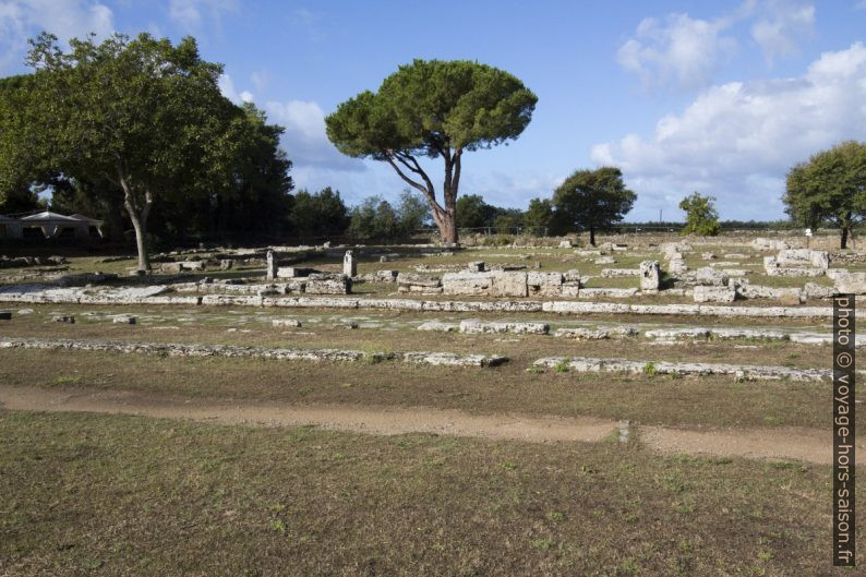 Quartiers résidentiels de Paestum au sud-ouest des temples. Photo © André M. Winter