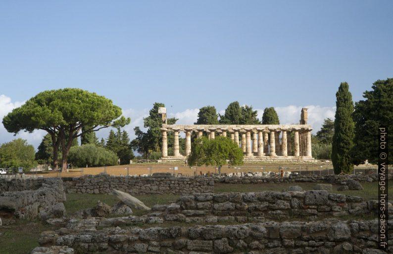 Vue vers le Temple d'Athéna de Paestum. Photo © Alex Medwedeff