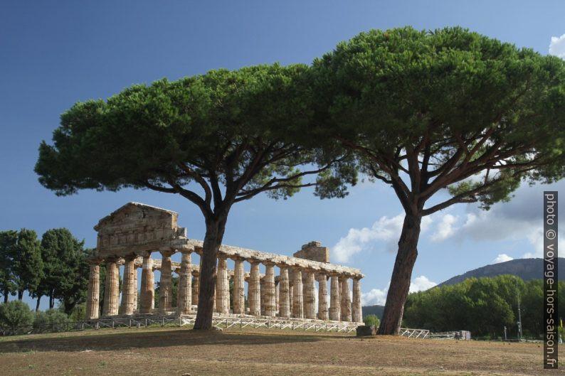 Il Tempio di Atena di Paestum. Photo © Alex Medwedeff