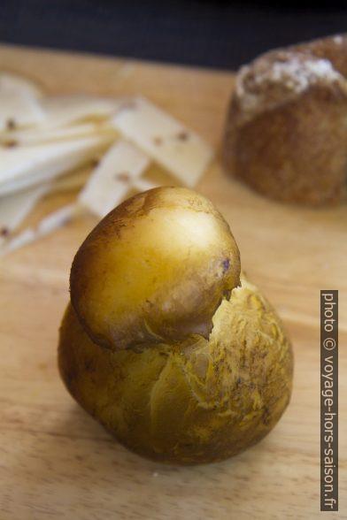 Fromage scamorza au lait de buffle réellement fumé. Photo © Alex Medwedeff