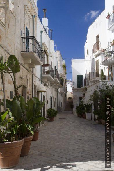Une ruelle de maisons blanches à Polignano. Photo © Alex Medwedeff