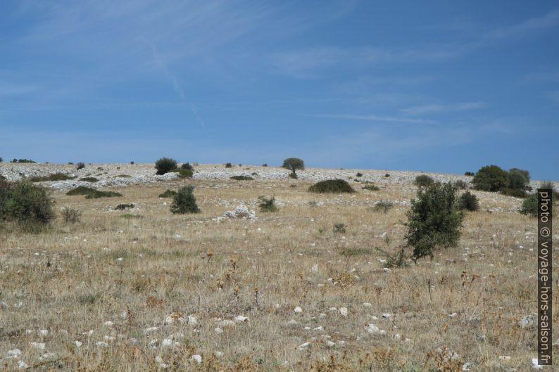 Plateau du Massif de Gargano. Photo © Alex Medwedeff