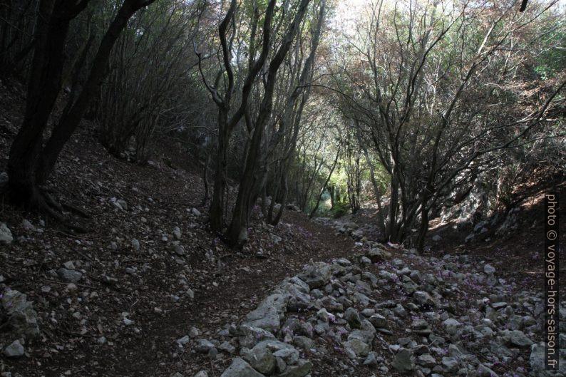 Le chemin aménagé dans la partie haute du Valle dell'Inferno. Photo © Alex Medwedeff
