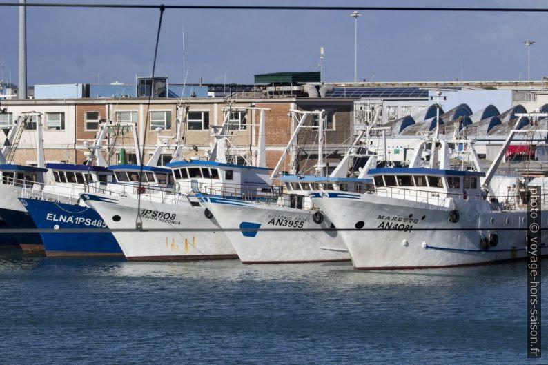 Bateaux de pêche sur le Mole Sud d'Ancône. Photo © André M. Winter