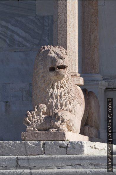 Lion stylophore gauche de la cathédrale d'Ancône. Photo © André M. Winter