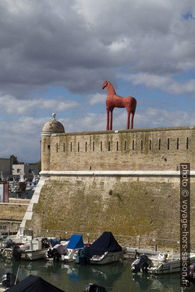 Un cheval rouge sur le lazaret d'Ancône. Photo © Alex Medwedeff