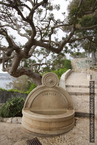 Fontaine coexist. Photo © André M. Winter